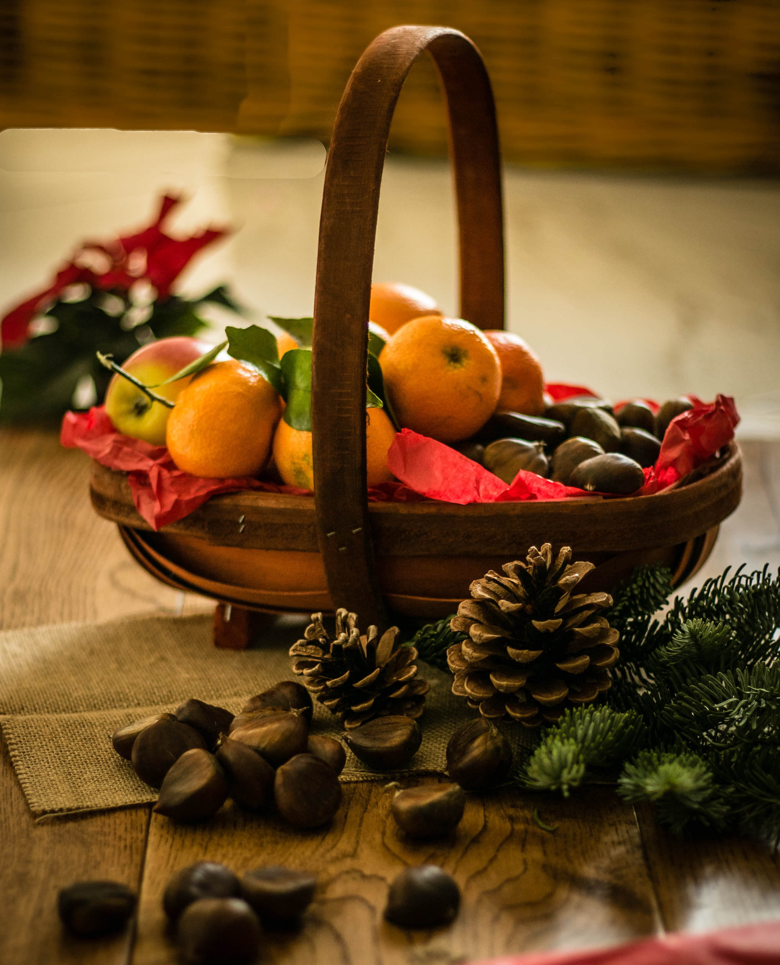 Christmas Flowers and Fruit Decorations